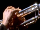 Red Hot Chili Peppers - Flea and Chad Trumpet Jam - Live at Slane Castle