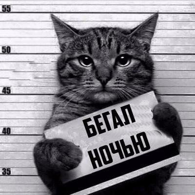 Айнур Гарипов