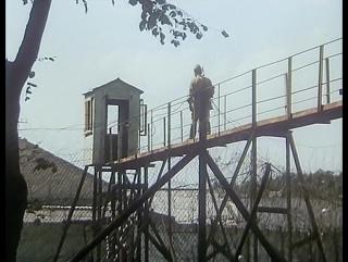 «Беспредел» — художественный фильм 1989 года. СССР