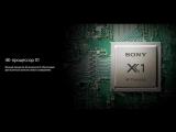 Качество изображения 4К-телевизоров Sony BRAVIA