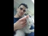 Cat массаж или магнит для девушек :))