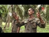 Спецподразделения - Коммандос Малайзии 2011