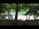 CC Moore TV - The iPhone Carpers  - European Park Lake
