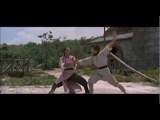 Yuen Tak vs Yuen Fai - The Master (1980)