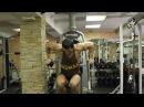Натуральный бодибилдинг: первая тренировка трехдневного сплита грудь-бицепс .