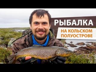 Fishtoday #20. Рыбалка на Кольском. Ловля кумжи на вертушки и колебалки