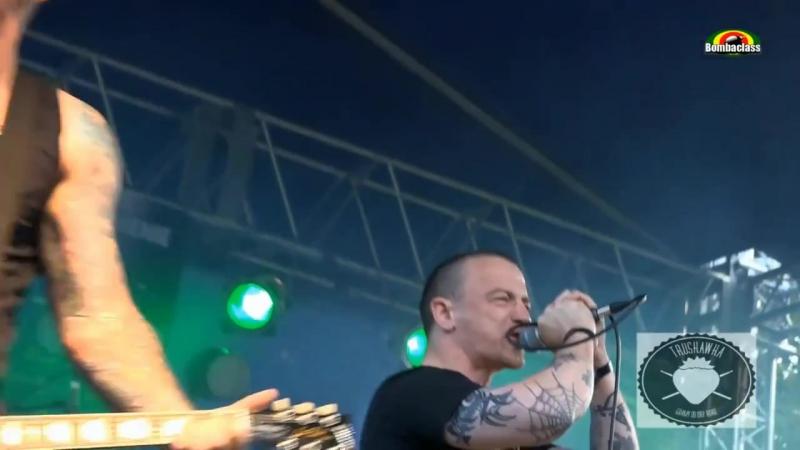 THE ANALOGS - Live @ Truskawka 2014