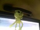 Скелет танцует под музыку :-)