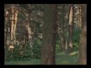 17 Пуркуа па ДАртаньян и три мушкетёра 1978 720p