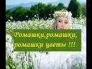 Romashki, romashki, romashki cvety Ромашки, ромашки, ромашки цветы