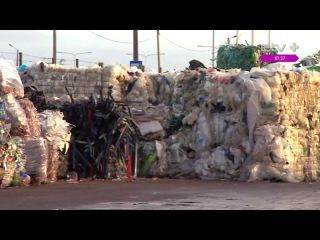 Почему важна сортировка отходов? Рубрика Татьяны Лавровой