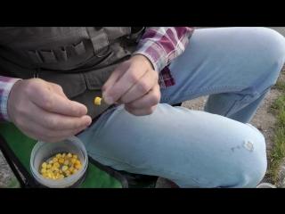 Как правильно насадить кукурузу на крючок...