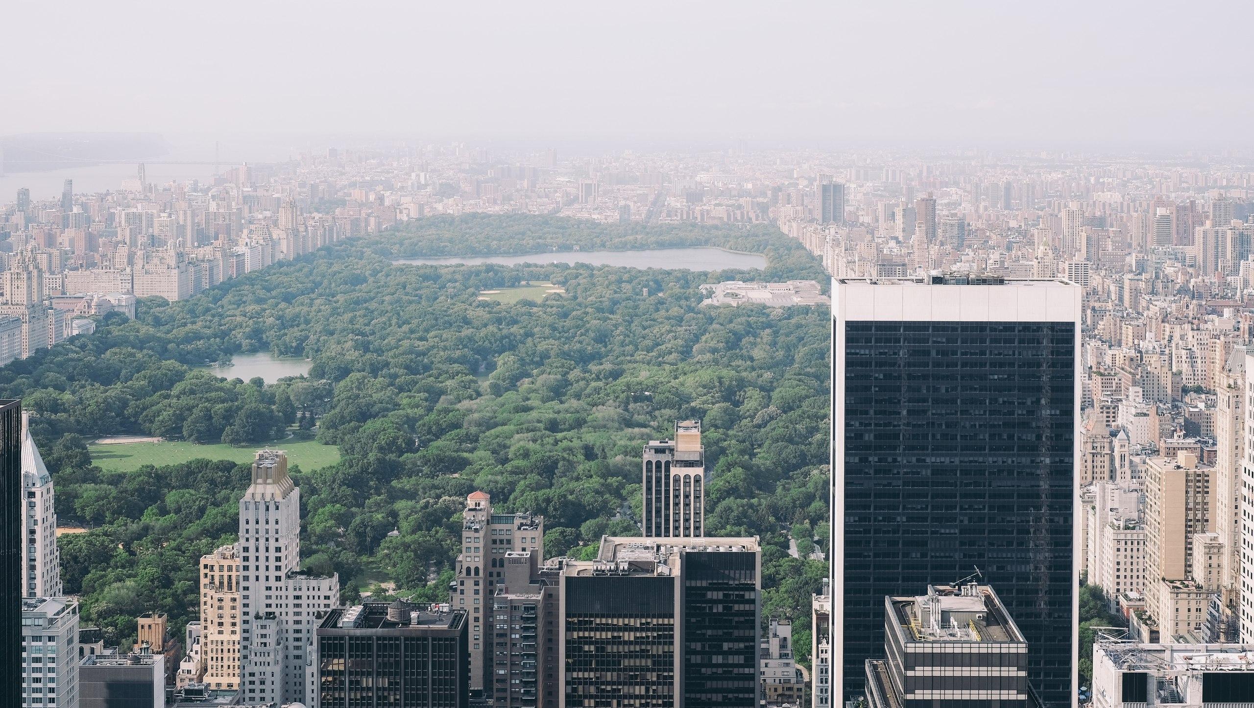 Нью-йорк центральный парк