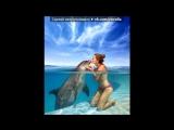 Видеоальбомы Минутта под музыку Олег Анофриев и Валентина Толкунова - А дельфины добрые. Picrolla