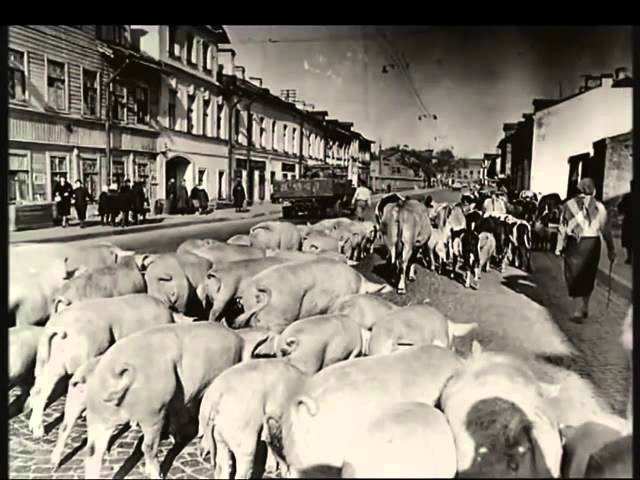 'Исторические хроники' с Николаем Сванидзе 1941 год Битва за Москву