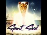 Spirit Soul vol. 3 (mixed by Vega Z)