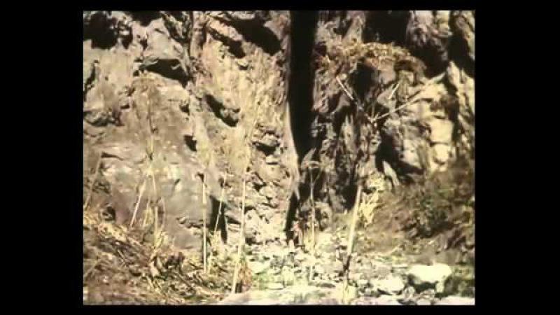 Джура, охотник из Минархара (серия 6) (фильм)