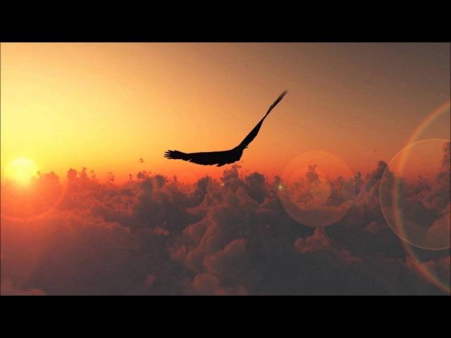 Feathered Sun - Scheune (Original Mix)
