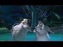 Мадагаскар 2 Мото-мото Песня часть 2 HD Full