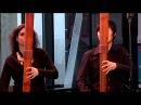 The Royal Wind Music Pierre Phalèse Bransle Gay