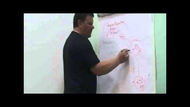Тактика лечения тела в Биологическом Центрировании