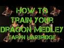 How to Train Your Dragon Medley Taryn Harbridge