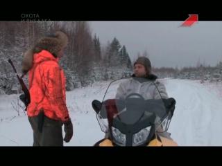 Охота на кабана с подхода | Сезон охоты