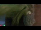 Гринч-Похититель Рождества (2000)