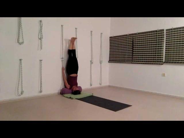 Yoga Kurunta - program posvećen BKS Iyengaru 16.09.2014