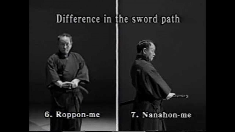7. Iaido Kata Seitei 07 Nanahon-me - Sampo-giri - High quality - www.thesamuraiworkshop.com