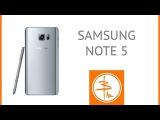 Samsung Galaxy Note 5 или Самыи