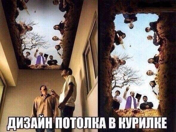 http://cs627427.vk.me/v627427175/6bcc/EdPH_xBdh8Y.jpg