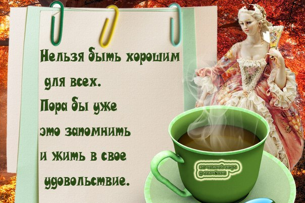 https://pp.vk.me/c627427/v627427864/1b21d/K5pP7QpRyVs.jpg