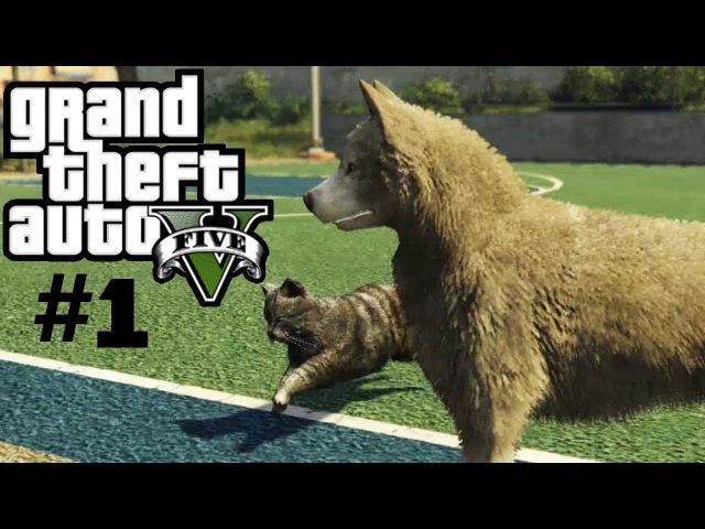 Все лофофоры в GTA 5 ►Играем за животных ►часть 1