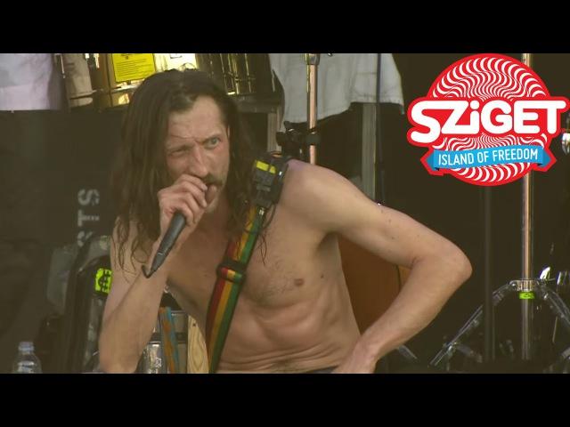 Gogol Bordello - Lela Pala Tute Live @ Sziget 2015