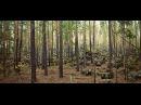 Каменные чудеса Рачейских лесов Рачейский бор Рачейские Альпы Рачейские скалы Сентябрь 2015
