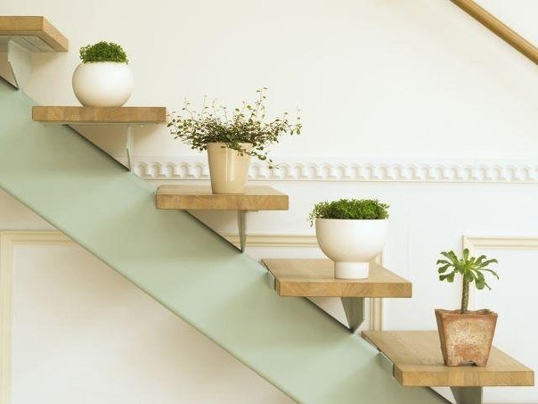 Красивая идея, полочки на стене для цветов в виде лестницы… (1 фото) - картинка