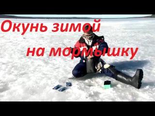 Ловля окуня зимой на мормышку-озеро Красногвардейское