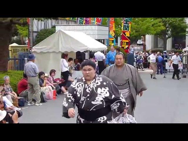 十両、幕内力士の場所入り模様・その2 平成27年・秋場所初日Day 1 Sumo Aki Basho Sep 2015