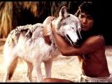 Семейный фильм Книга джунглей Маугли (1994)