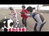 Веселый фермер