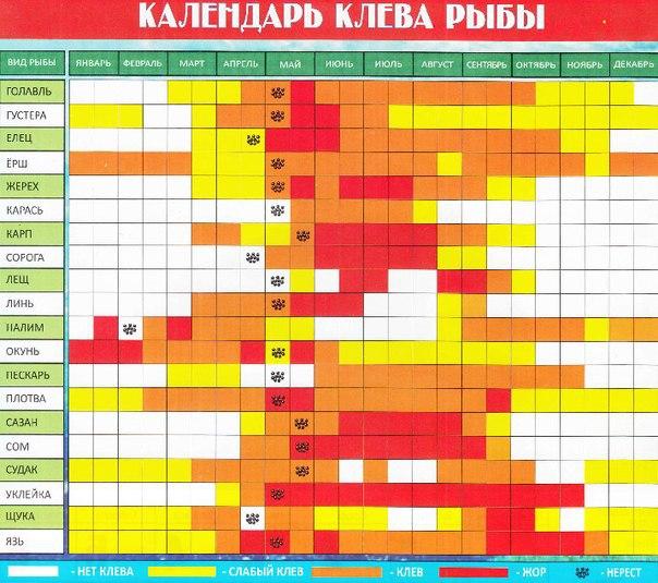 лунный календарь рыболова в калининградской области