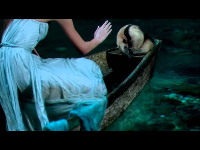 Wonderfull Chill Out Music Love Session On Amazing HD Video The Original