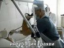 Интубация трахеи с помощью гибкого бронхоскопа 17.04.2011.