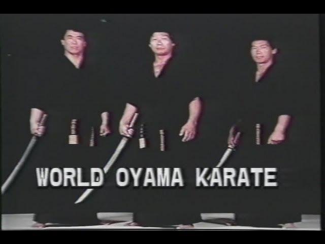 World Oyama Karate Perfect Karate Part 2