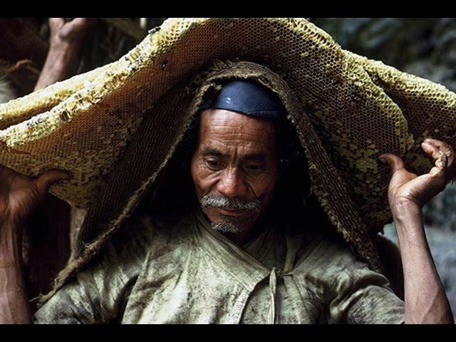 Кочевники из гималайских джунглей(Honey Hunters of Nepal) 2003