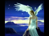Андрей Сапунов Птицы белые мои