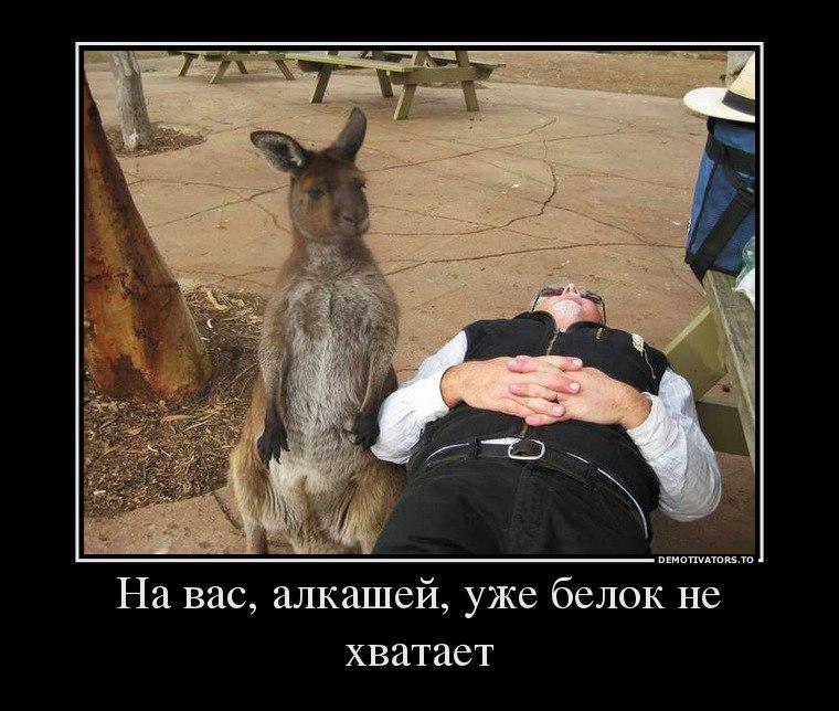 Порошенко призвал Всемирный конгресс украинцев мобилизовать усилия диаспоры для освобождения Савченко и всех украинских политзаключенных - Цензор.НЕТ 6387