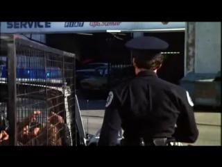 бар Голубая устрица 2 (к_ф Полицейская Академия 2)