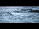Kap Slap feat.  Angelika Vee -  Let It All Out (LTNs Sunrise Bootleg)
